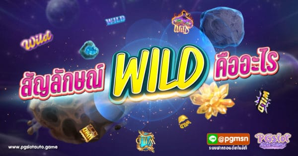 สัญลักษณ์ Wild