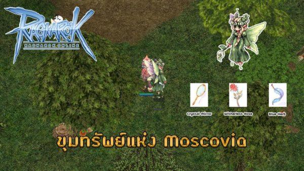 เก็บเลเวล Moscovia RO